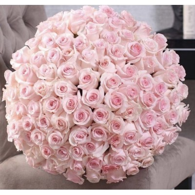 101 розовая роза Эквадор