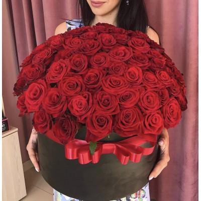 75 красных Роз Фридом в коробке