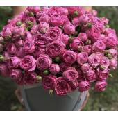 51 пионовидная роза в шляпной коробке